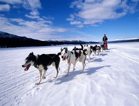 sledding breckenridge sledding breckenridge ski resort breckenridge colorado usa