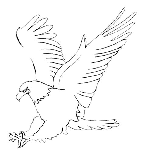 Eagle Bird Coloring Pages To Printable Eagle Coloring Page