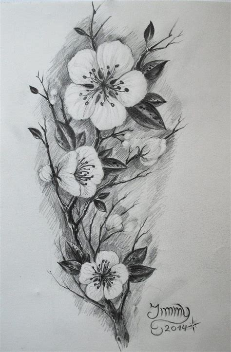 black and white cherry blossom tattoo designs cherry blossom realistic pencil and in color