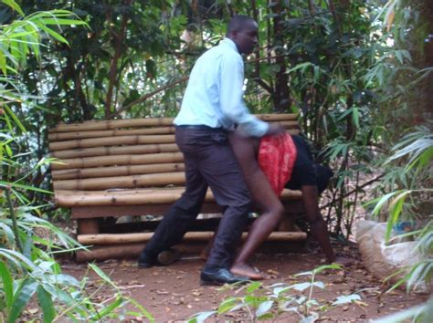 kenya sex bench muliro gardens pictures fasci garden
