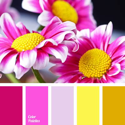pink matches with what color color match page 3 of 3 color palette ideas