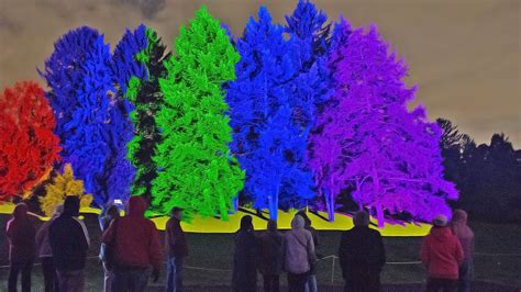 morton arboretum holiday lights illumination tree lights at the morton arboretum 2017