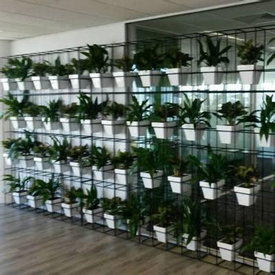 green walls vertical gardens plantscaping custom