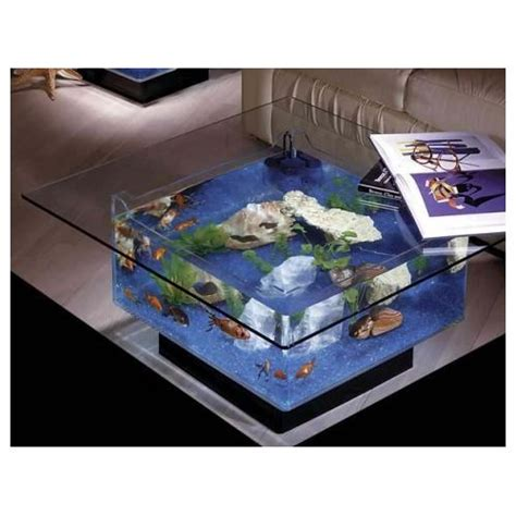25 gallon coffee table aquarium