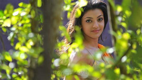 kajal name themes kajal agarwal tollywood actress hd wallpapers crazy themes