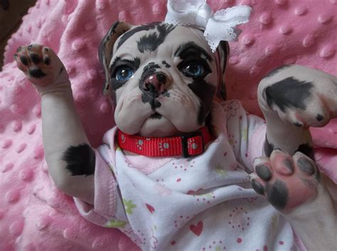 puppy monkey baby doll for sale image gallery reborn animals