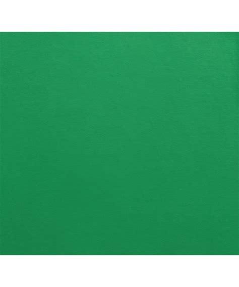 irish green gildan ultra cotton irish green t shirt