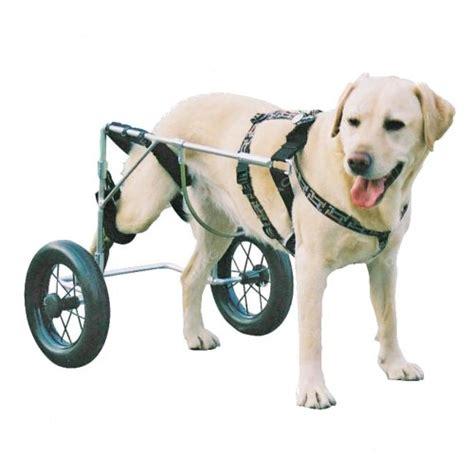 chariot pour chat handicap 233