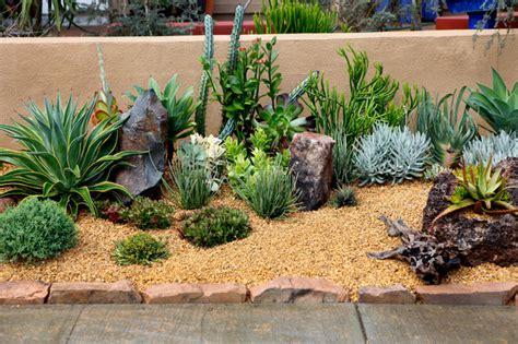 succulent front yard design southwestern landscape