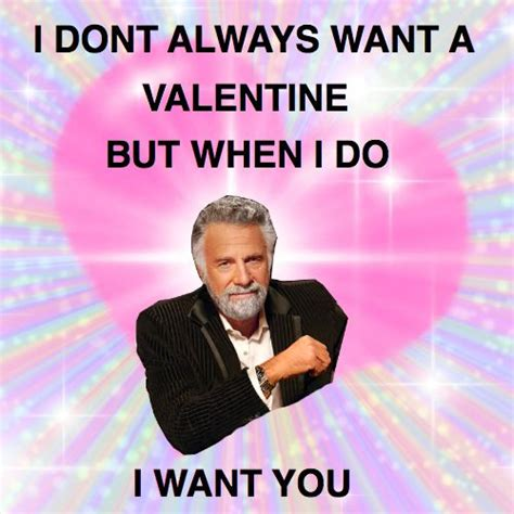 Valentines Card Memes - best 25 valentines day memes ideas on pinterest