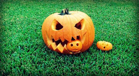 pumpkin another pumpkin pumpkin idea 4 pumpkin pumpkin