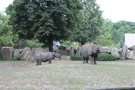Zoologischer Garten Warschau by Warsaw Zoo Foto Di Warsaw Municipal Zoological Garden