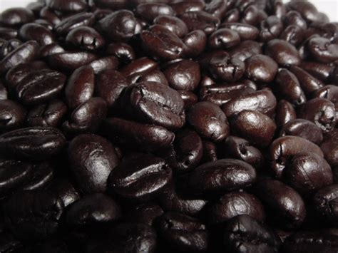 Robusta Lung By Genesis Coffee caffeine convergently evolved or creatively provided