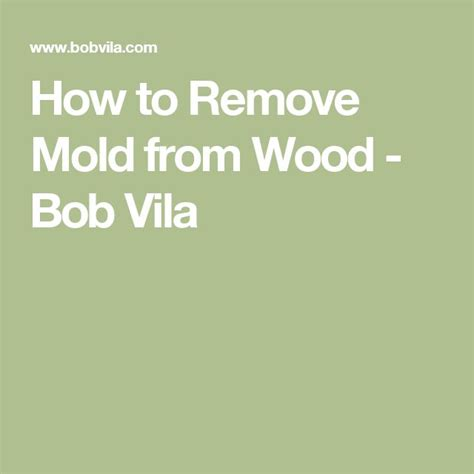 how to clean mold from upholstery best 25 remove mold ideas on pinterest how to remove