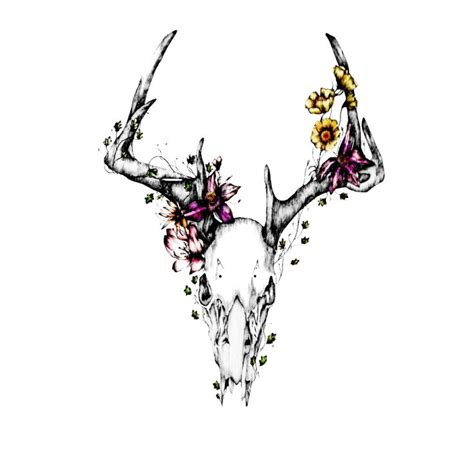 deer skull tattoos designs best 25 deer skull tattoos ideas on