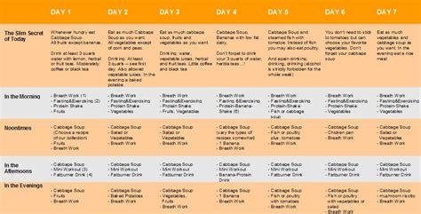 9 day protein diet dr nowzaradan high protein weight loss plan