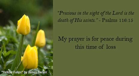 words of comfort for loss of unborn baby prayer for peace during bereavement free sympathy