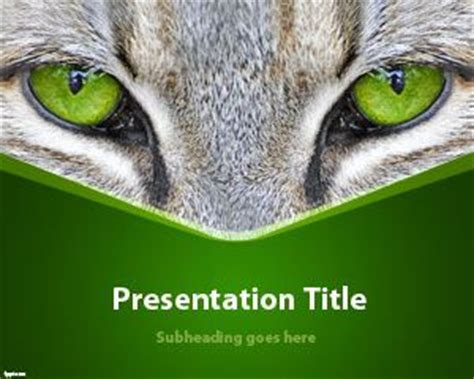 Animals Free Powerpoint Templates Cat Powerpoint Template