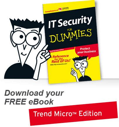 get it security for dummies for free