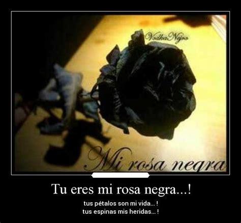 imagenes de rosas negras con frases de amor im 225 genes de rosas negras con frases imagenes de luto