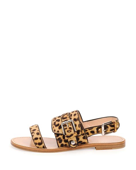 leopard flat sandals lyst gianvito band leopard print flat