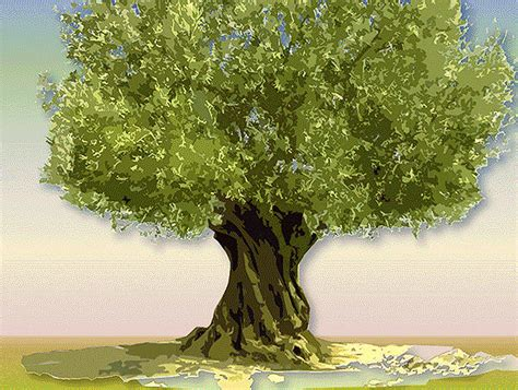 animation tree chaz graphics animations