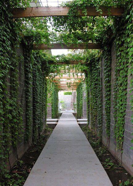 narrow bed  foot  green wall   vines