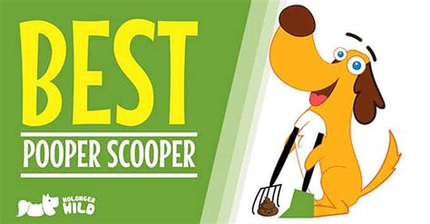 scoopers for dogs best pooper scooper for dogs and cats top 3 clever products nolongerwild