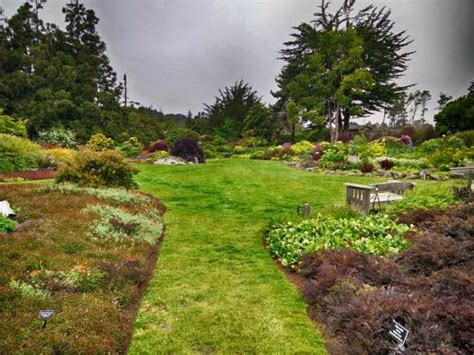 Botanical Garden Fort Bragg Mendocino Coast Botanical Garden 2 Picture Of