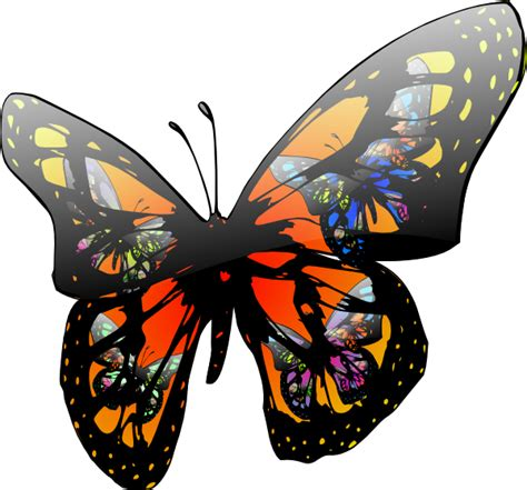 Animated Butterflies Flying Clipart Best Images Of Animated Butterflies