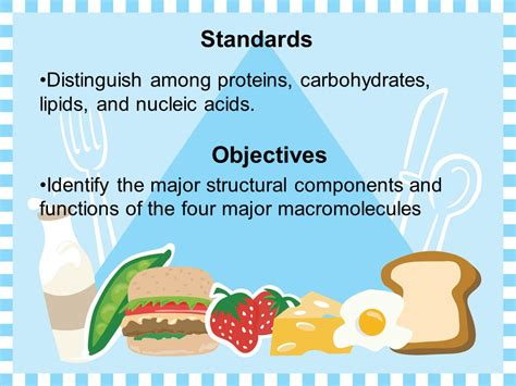 chapter 1 carbohydrates lipids and proteins chapter 5 the structure and function of macromolecules