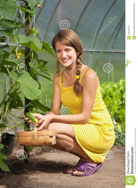 girl with cucumber girl picking cucumber stock photography image 15247512