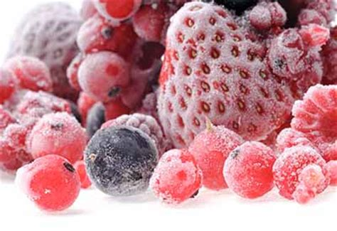 durata alimenti congelati conservazione a basse temperature congelamento e