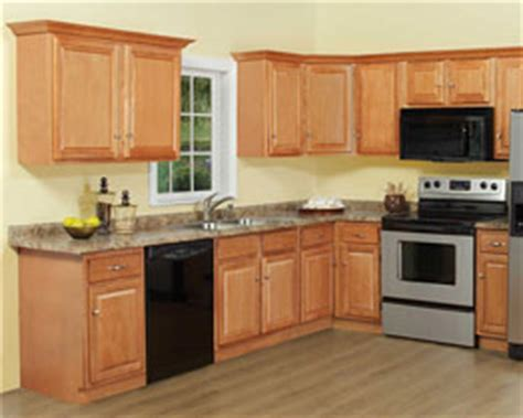pros and cons of painted kitchen cabinets a kitchen cabinet paint in columbia heights washington dc