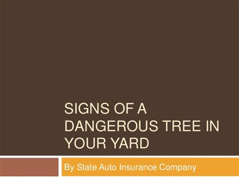 auto insurance when a tree signs of a dangerous tree in your yard