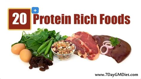 i protein foods 20 high protein foods best protein sources for