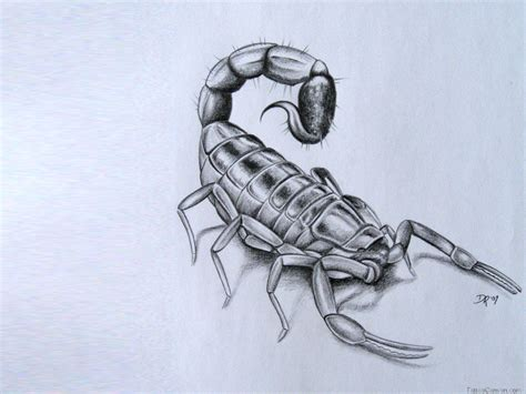 3d scorpion tattoo designs scorpion tattoos