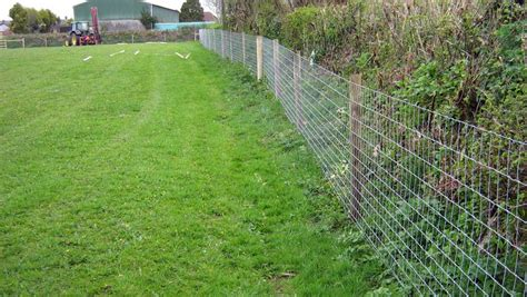 chain link fence webbing fences
