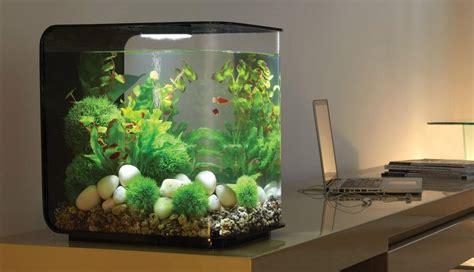 Hiasan Aquarium Pohon Mini fresh water aquarium idea 2017 android apps on play