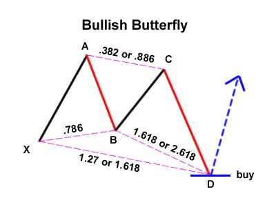 butterfly pattern forex trading bullish butterfly bamboo growth forex