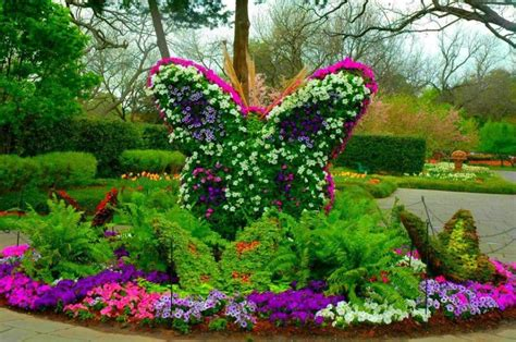 Flower Garden With Butterflies Butterfly Flower Garden Pixdaus