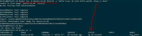 docker tutorial stackoverflow shell docker tutorial daemonized container closes