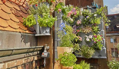 giardino piante aromatiche coltivare piante aromatiche sul terrazzo i nostri