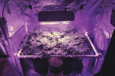 create   soil mix  cannabis rqs blog