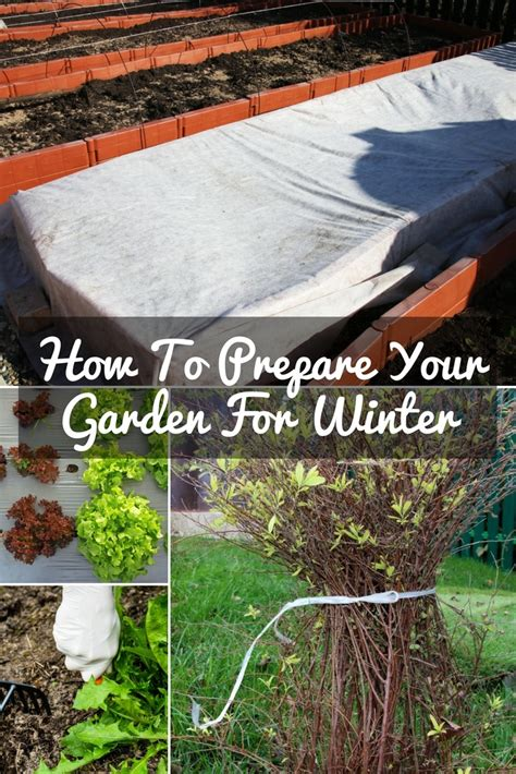 Preparing Garden For Winter by How To Prepare Your Garden For Winter A Green