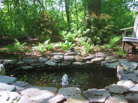 Woodlands Backyard by From Patch To Woodland Garden