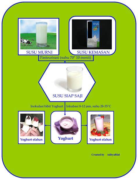 Bibit Yogurt yoghurt yogurt 2 rumajamur