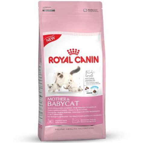 Murah Catfood Royal Canin Babycat 4kg royal canin babycat croquettes pour chatte et