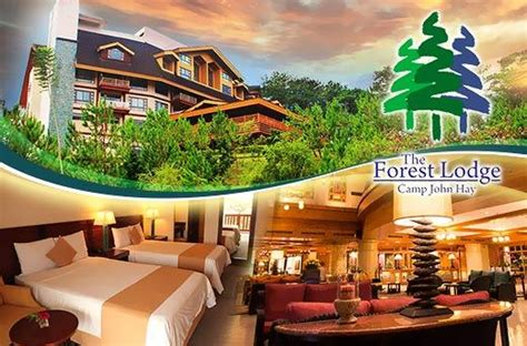 accommodation promo   forest lodge  camp