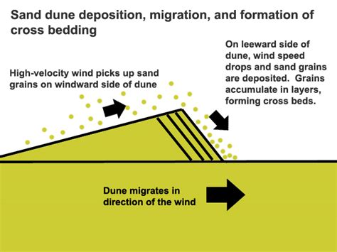 sand dune cross section textbook cross bedding the life of your time